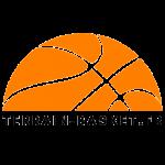 Logo-Terrain-Basket.fr